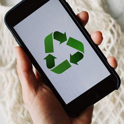 Responsabilidade socioambiental: saiba mais sobre essa tendência corporativa